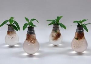 Recycler peut vous mener vers des idées lumineuses.